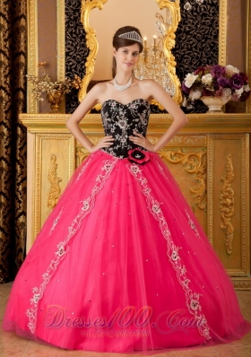 Hot Pink and Black Quinceanera Dress Embroidery Ball Gown - US$225.59