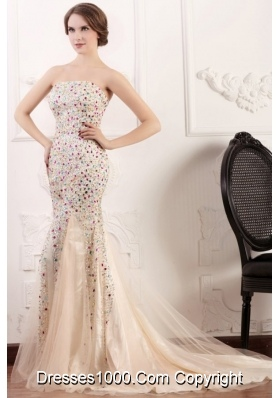 Luxurious Mermaid Prom Dress with Multi-color Beading Overlay