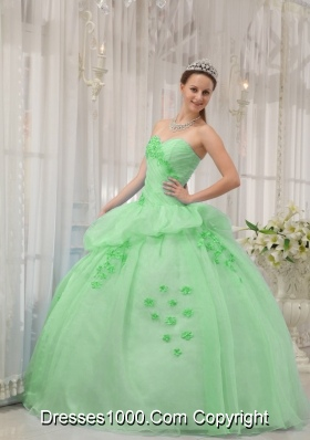 Classical Quinceanera Dress in Apple Green Ball Gown Sweetheart with Appliques
