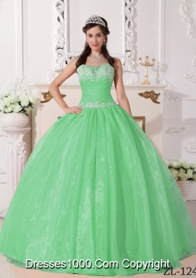 Elegant Quinceanera Dress in Apple Green Ball Gown with Appliques