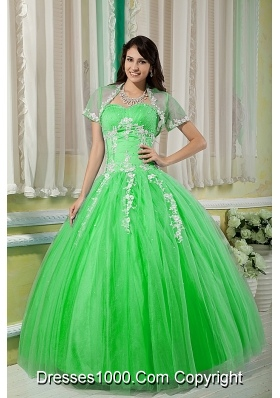 Prettty Sweetheart Quinceanera Gowns with Appliques