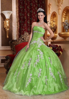 Beautiful Appliques Puffy Strapless Quinceanera Dresses for 2014