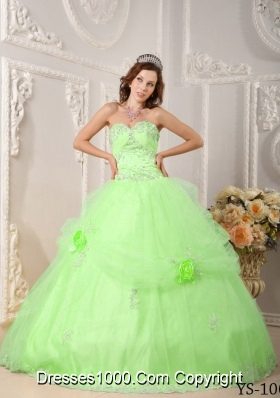 Beautiful Princess Sweetheart Organza Quinceaneras Dress with Appliques and Flowers
