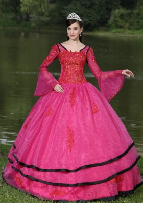 Most Popular V-neck Appliques Decorate Quinceanera Gowns With Long Sleeves