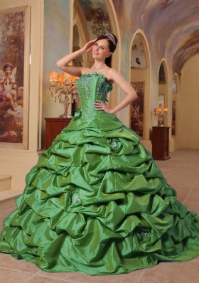 Petty Green Puffy Strapless Court Train Pick-ups Quinceanera Dress for 2014