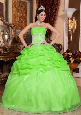 2014 Spring Green Puffy Strapless Appliques Quinceanera Dress with Pick-ups