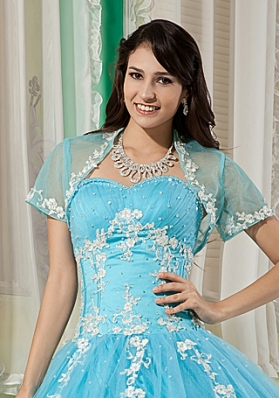 Elegant and Affordable Aqua Blue Quinceanera Jacket with Appliques