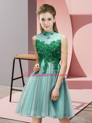 Eye-catching Light Blue Empire Appliques Dama Dress Lace Up Tulle Sleeveless Knee Length