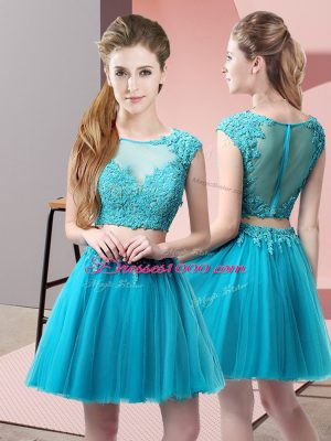 Baby Blue Sleeveless Tulle Zipper for Prom and Party