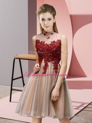 Lovely Sleeveless Knee Length Appliques Lace Up Bridesmaid Gown with Pink
