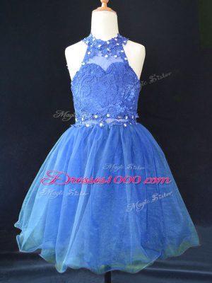 Mini Length A-line Sleeveless Blue Flower Girl Dresses for Less Lace Up