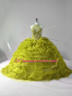 Comfortable Court Train Ball Gowns Quinceanera Gown Olive Green Halter Top Tulle Sleeveless Lace Up