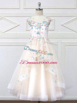 Sleeveless Appliques Zipper Toddler Flower Girl Dress