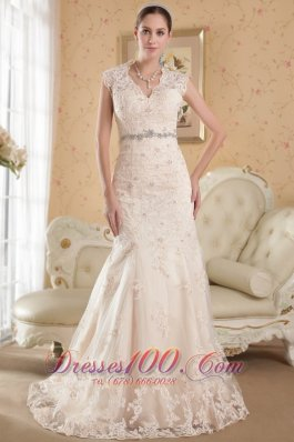 Champagne Lace Mermaid v-Neck Court Train Wedding Dress