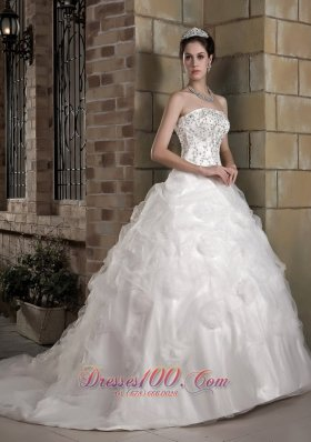 Strapless Bridal Dress Taffeta and Organza Appliques