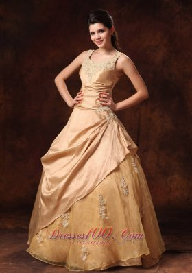 Champagne Taffeta Organza Straps Appliques Bridal Dress Scoop