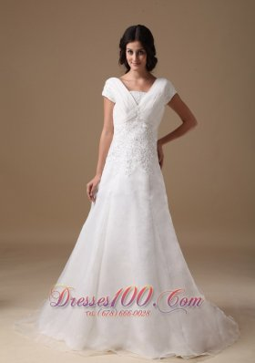 Organza and Taffeta Wedding Gown V-neck Appliques Court Train