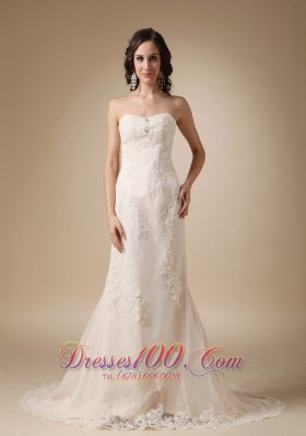 Dreamy Empire Lace Bridal Dress Column Sweetheart Court