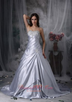 Silver Themed Wedding Dress Strapless Ruch Court Train