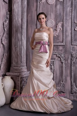 Champagne Beaded Satin Brush Belt Mother Dress