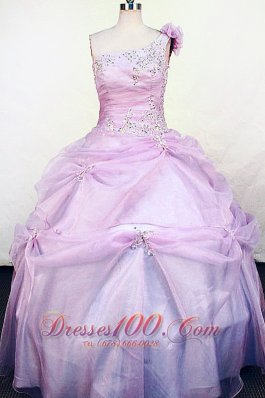 Lilac One Shoulder Sweet Sixteen Gowns Pick up Flowers