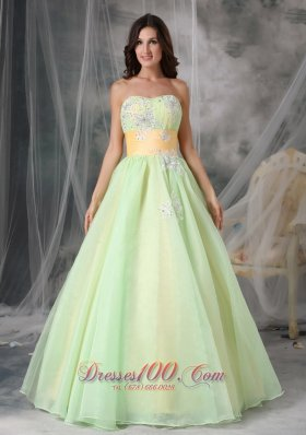 Yellow Green A-line Quinceanera Dress Organza Appliques