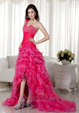 Floral Decorated One Shoulder Prom / Evening Dress Hi-low