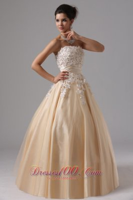 Champagne and White Appliques Ball GownTulle Overlay