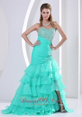 Beaded Decorate and Ruch Bodice Celebrity Dress Mermaid
