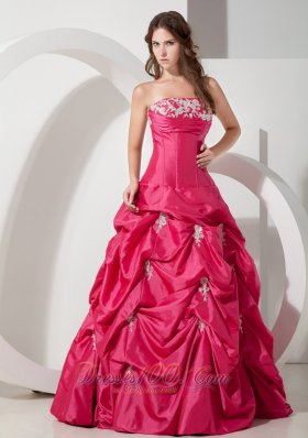 Popular Hot Pink Prom Dress Appliques A-line