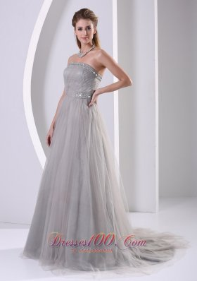 Tulle Gray Sweep Affordable Prom Dress Designers