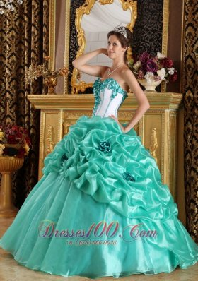 Sweetheart Organza Floral Turquoise Quinceanera Dress