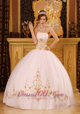 Plus Size Quinceanera Dresses | Custom Made Quinceanera Dress in ...