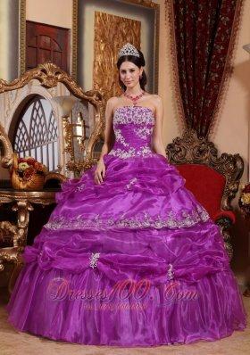 Plus Size Fuchsia Organza Appliques Quinceanera Gowns