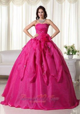 Organza Appliques Fuchsia Ball Gown Quinceanera Dress