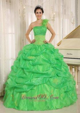 Spring Green One Shoulder Dresses 15 Embroidery Pick-ups