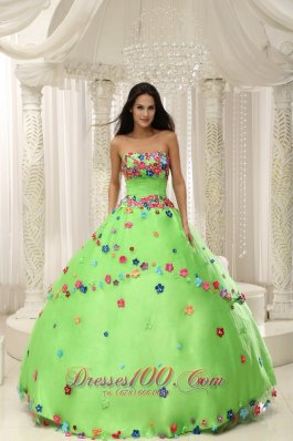 Spring Green Sweet 15 Dresses With Appliques Decorate