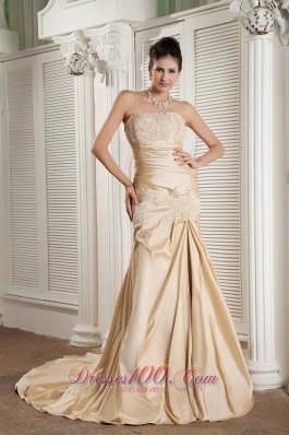 Appliques Court Champagne A-line Prom Pageant Gown
