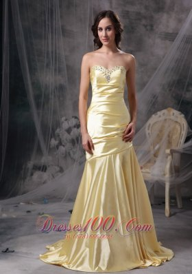 17 Prom Dress Teenager Prom Dress Brush Train