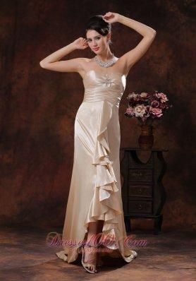 Elegant Champagne Brush Mother Dress Designer