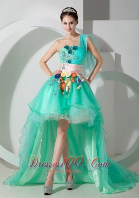 Colorful Flowers Apple Green Puffy High-low Prom Holiday Dress