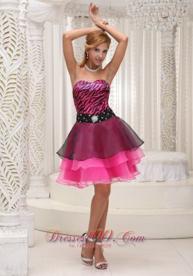 Zebra and Organza Hot Pink and Black Prom / Cocktail Dress