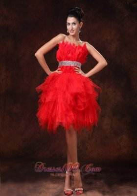 Chic Red Feather and Tulle Beaded Cocktail Dress 2013