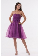 Lovely Purple Strapless Appliques Organza Knee-length Prom Dress