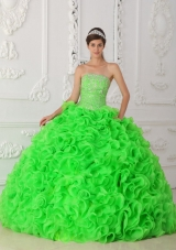 Spring Green Ball Gown Strapless Organza Beading Quinceanera Dress 2014 with Ruffles