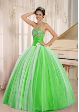 2014 Pretty New Arrival Strapless For Long Quincanera Dresses