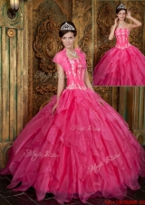 Fashionable Appliques and Ruffles Hot Pink Quinceanera Dresses