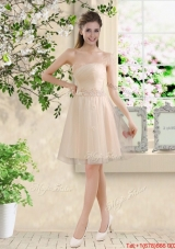 Comfortable Strapless Champagne Prom Dresses with Knee Length
