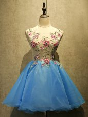 Beautiful Baby Blue Sleeveless Embroidery Mini Length Homecoming Dress