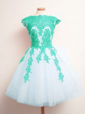 Multi-color A-line Scalloped Sleeveless Tulle Mini Length Lace Up Appliques Dama Dress